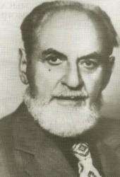 Илья Николаевич Шевелев