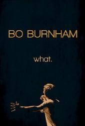 Бо Бёрнем: Что (Bo Burnham: What)