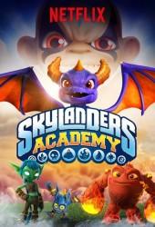 Академия Скайлендеров (Skylanders Academy)
