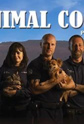 Служба охраны животных Феникса (Animal Cops Phoenix)