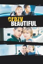 Безумная и Прекрасная (Crazy/Beautiful)