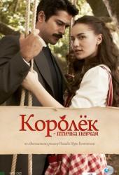 Королёк — птичка певчая (Çalıkuşu) (2013)
