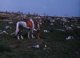О поле, поле, кто тебя  Усеял мертвыми костями?