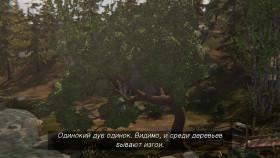 Одинокий дуб одинок. Видимо, и среди деревьев бывают изгои.