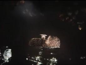 «Я в реке, пускай река сама несёт меня», — решил Ёжик, как мог глубоко вздохнул, и его понесло вниз по течению.